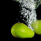2 Avicado ! by CjBarberPhoto