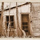 Tennessee Mountain Home by © Bob Hall