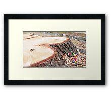 The lumberjack Framed Print