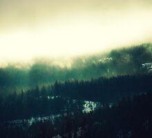Tree Layers by tsarts