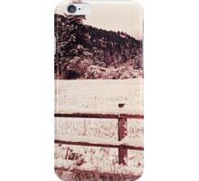 Fence of the Huckleberry Range  iPhone Case/Skin