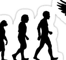 Human Evolution - Black Sticker