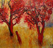 red tree's by glennbrady