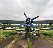 biplane by mrivserg