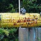 snails & corn by impossiblesong