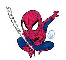 Spiderman by toastwaboot