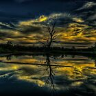 Wetland Twilight Abstract, Wonga Wetlands, Albury NSW Australia - The HDR Experience by Philip Johnson