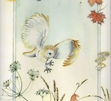 Harvest Moon: Satin finish barn owl print  by Lucinda Hare