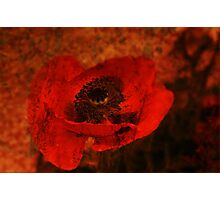 Red for passion Photographic Print