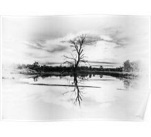 Zen - Wetland Dreaming, Wonga Wetlands, Albury NSW Australia - The HDR Experience Poster