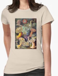 Actiniae by Ernst Haeckel (Public Domain) Womens Fitted T-Shirt