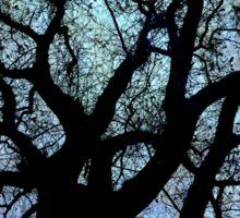Oak Tree Storm Sticker
