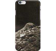 Everything Zen iPhone Case/Skin