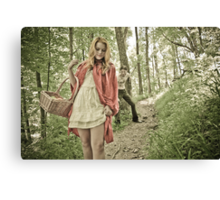 Little Red Riding Hood 3 Canvas Print