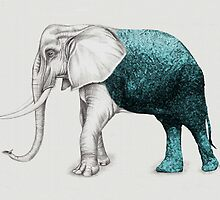 The Stone Elephant by Beth Thompson