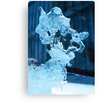 Meet the Ice Sculpture Canvas Print