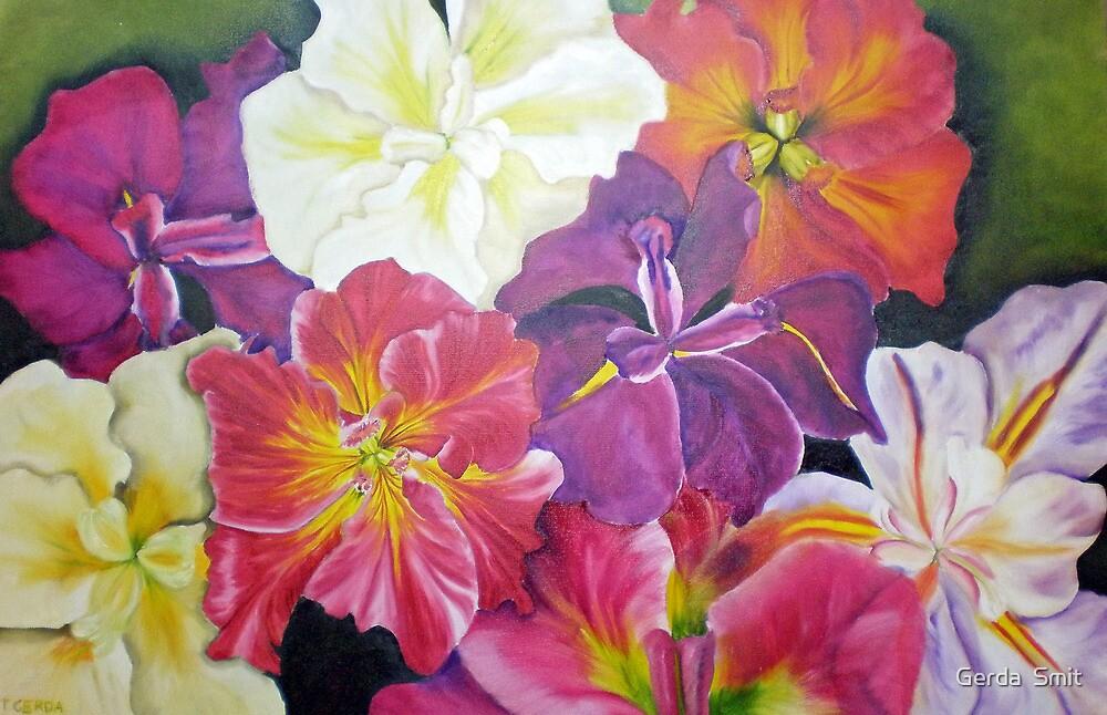 Iris by Gerda  Smit