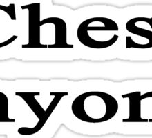 Chess Anyone?  Sticker
