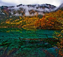 Five Flower Lake, JiuZhaiGou, China by Daniel  Chui