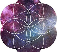 Cosmic Seed of Life by Cleo Lant