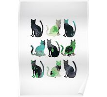 Nine Cats Poster