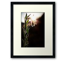 Stand Up Straight...Or Not Framed Print