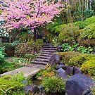 Japanese Garden by Zach Chadim