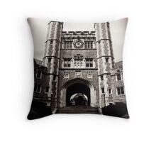 Princeton Throw Pillow