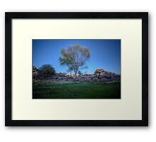 Rock Wall Tree Re...What The? Framed Print