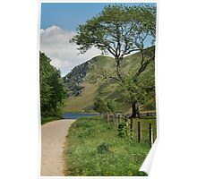 Tree at Ennerdale Water Poster