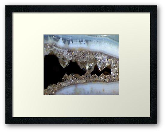 Dragon's Teeth by Stephanie Bateman-Graham