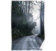 Logging Track, Bruny Island Poster