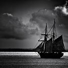 Ahoy There by Bree Schammer