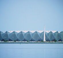 Crystal Hall, Baku, Azerbaijan by Lisa Hafey