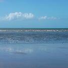 Balgal Beach by Sue Downey