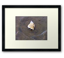 Mobile home at sea! Framed Print