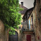 Sarlat France by Harrie Haaima