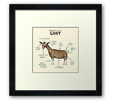 Anatomy of a Goat Framed Print