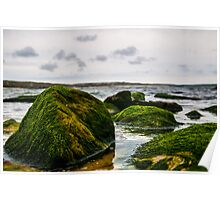 Mossy Boulders Poster