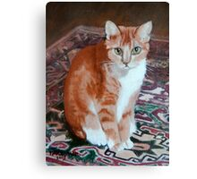 Spike on Granny's Carpet Canvas Print