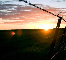 Wimmera sunset by Lindsay Lee