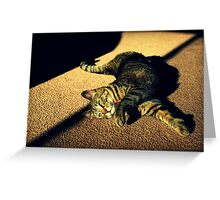 Play With Me? Greeting Card