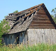 Old shed by Jim Sauchyn