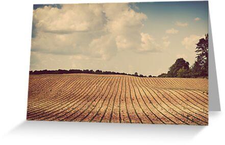 Heartland by KBritt