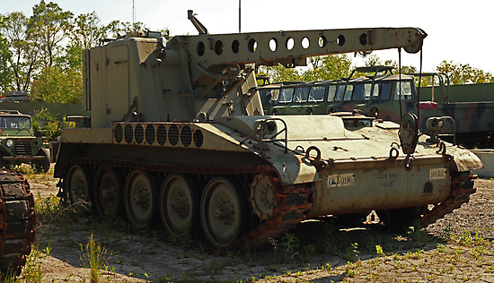 Armored Crane Image 7854 by Thomas Murphy