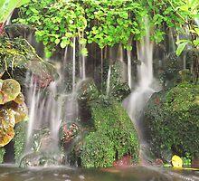 Mossy Fountain's Hidden Stream by Jojo Sardez