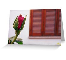 No Rose is JUST a Rose... Greeting Card
