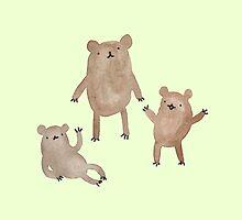 Three Bears by Sophie Corrigan