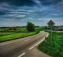 right of way landscape by NafetsNuarb