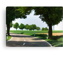 road to Bibertal I Canvas Print